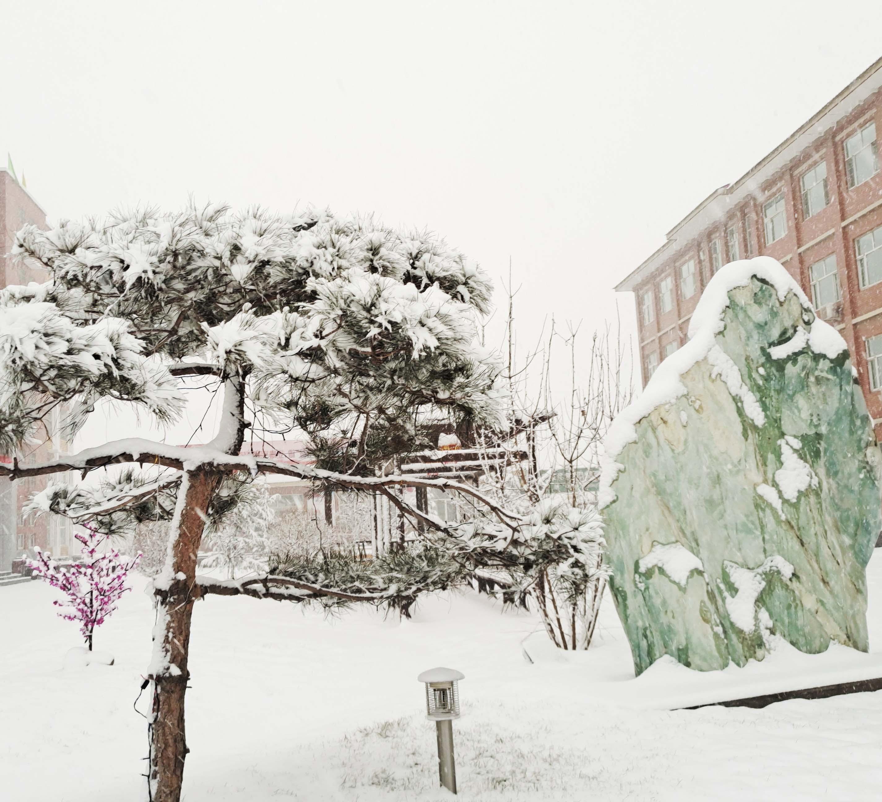 冬雪落春风,沁润吾心安